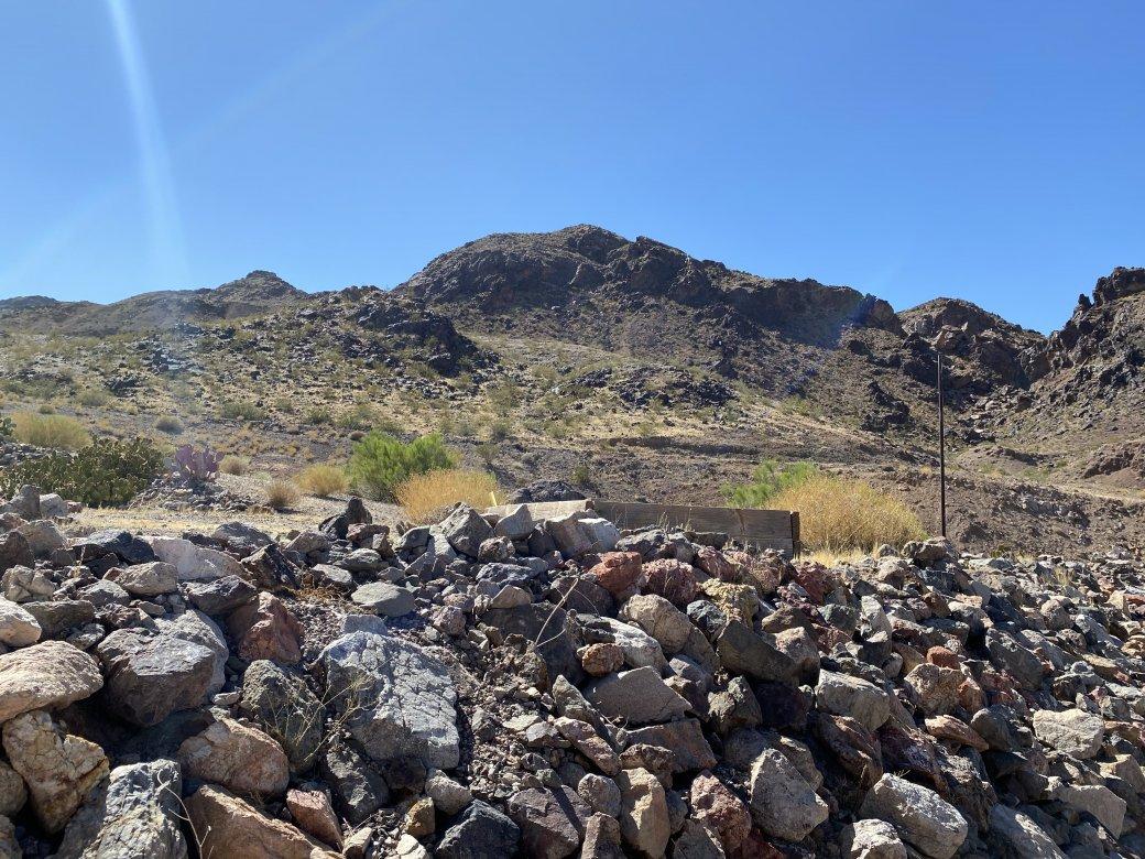 686 Mt Bona Way